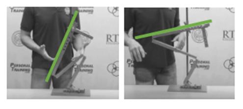 Tom Purvis - squat proportions 2